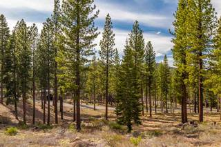 Listing Image 6 for 8201 Ehrman Drive, Truckee, CA 96161