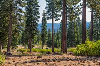 Listing Image 4 for 10638 Olana Drive, Truckee, CA 96161