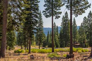 Listing Image 10 for 10638 Olana Drive, Truckee, CA 96161