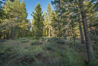 Listing Image 8 for 11545 Bennett Flat Road, Truckee, CA 96161