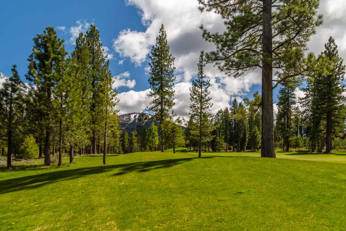 Image for 10246 Dick Barter, Truckee, CA 96161