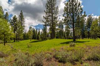 Listing Image 6 for 10246 Dick Barter, Truckee, CA 96161