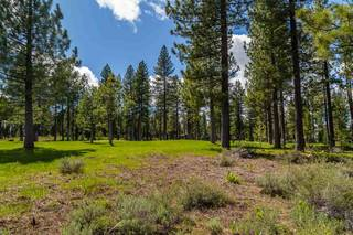 Listing Image 7 for 10246 Dick Barter, Truckee, CA 96161