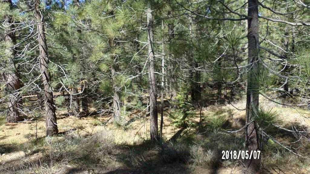 Image for 7300 Canyon Drive, Portola, CA 96122