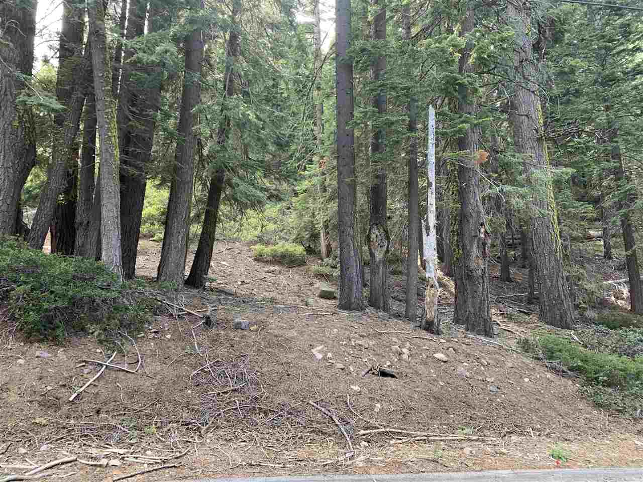 Image for 110 Furka Pass Road, Homewood, CA 96141