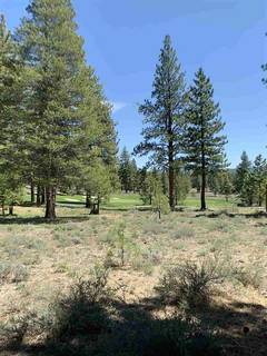 Listing Image 5 for 10209 Dick Barter, Truckee, CA 96161