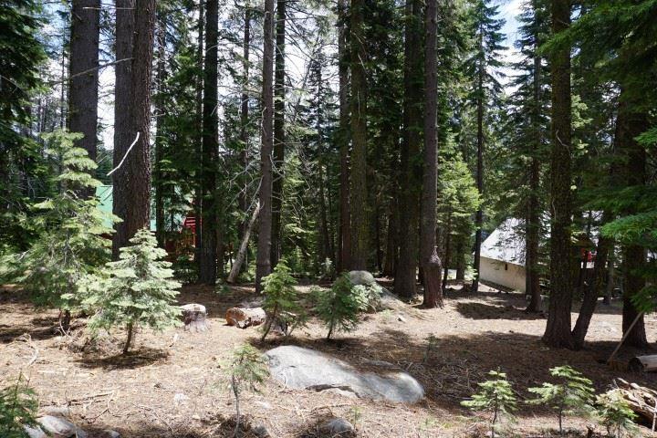 Image for 50905 White Fir Terrace, Soda Springs, CA 96161-0000