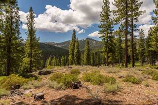 Listing Image 7 for 8101 Valhalla Drive, Truckee, CA 96161