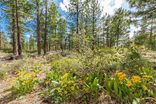 Listing Image 20 for 17259 Walden Drive, Truckee, CA 96161