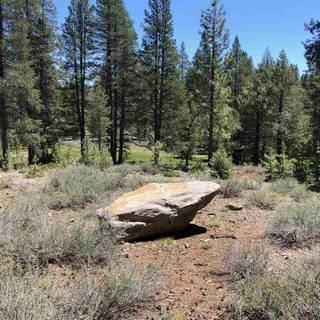 Listing Image 2 for 11711 Ghirard Road, Truckee, CA 96161-2771