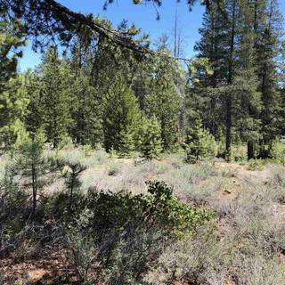 Listing Image 5 for 11711 Ghirard Road, Truckee, CA 96161-2771