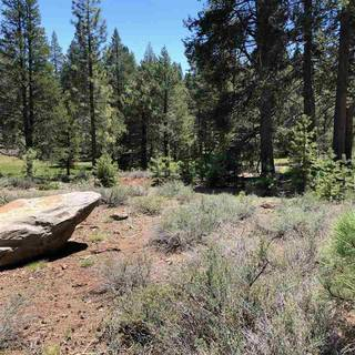 Listing Image 7 for 11711 Ghirard Road, Truckee, CA 96161-2771
