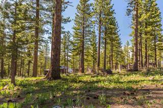 Listing Image 2 for 8171 Fallen Leaf Way, Truckee, CA 96161