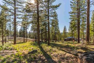 Listing Image 5 for 8171 Fallen Leaf Way, Truckee, CA 96161
