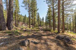 Listing Image 6 for 8171 Fallen Leaf Way, Truckee, CA 96161