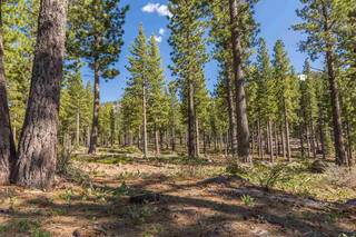 Listing Image 7 for 8171 Fallen Leaf Way, Truckee, CA 96161