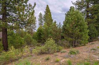 Listing Image 12 for 9309 Heartwood Drive, Truckee, CA 96161