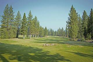 Listing Image 21 for 9309 Heartwood Drive, Truckee, CA 96161