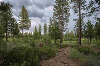 Listing Image 6 for 9309 Heartwood Drive, Truckee, CA 96161