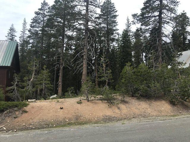 Image for 7111 Soda Springs Road, Soda Springs, CA 95728-0000