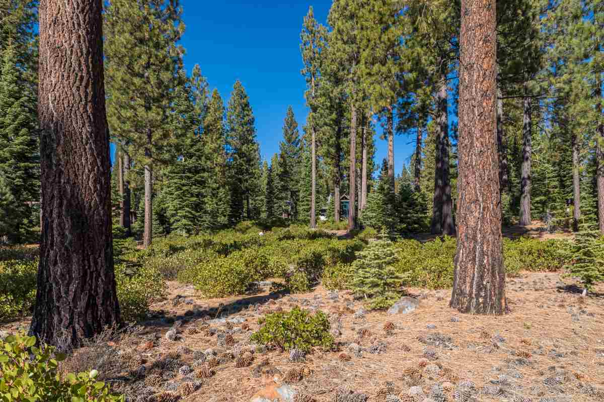 Image for 8233 Valhalla Drive, Truckee, CA 96161