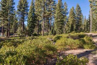 Listing Image 2 for 8233 Valhalla Drive, Truckee, CA 96161