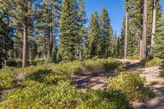 Listing Image 4 for 8233 Valhalla Drive, Truckee, CA 96161