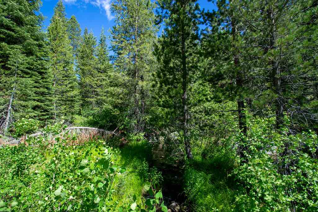 Image for 11606 Euer Valley Road, Truckee, CA 96161-0000