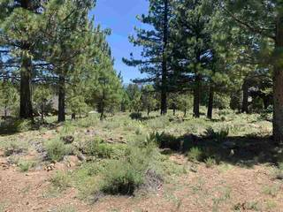Listing Image 3 for 10253 Dick Barter, Truckee, CA 96161