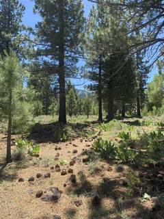 Listing Image 6 for 10253 Dick Barter, Truckee, CA 96161