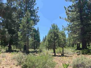 Listing Image 7 for 10253 Dick Barter, Truckee, CA 96161