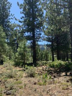Listing Image 8 for 10253 Dick Barter, Truckee, CA 96161