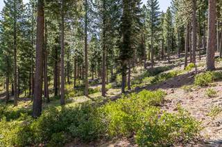 Listing Image 7 for 9468 Clermont Court, Truckee, CA 96161