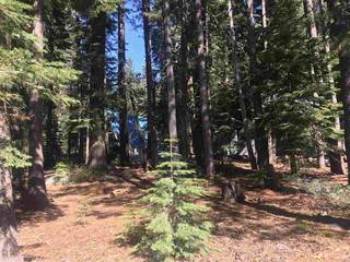 Listing Image 6 for 50912 Jeffery Pine Drive, Soda Springs, CA 95728