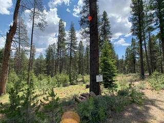Listing Image 4 for 11771 Ghirard Road, Truckee, CA 96161