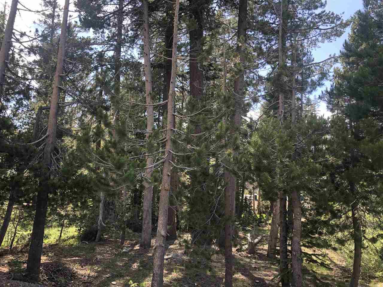 Image for 8161 Soda Springs Road, Soda Springs, CA 95728