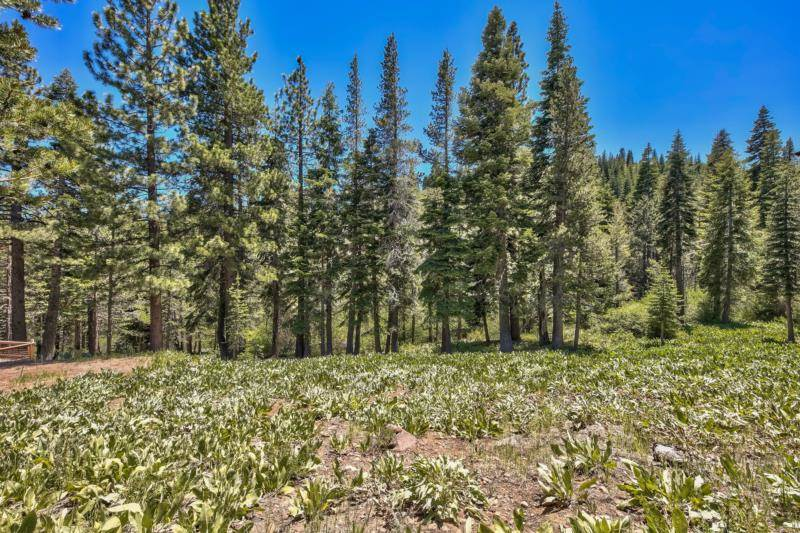 Image for 16261 Skislope Way, Truckee, CA 96161