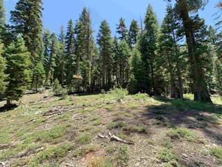 Listing Image 6 for 1445 & 1451 Mineral Springs Trail, Alpine Meadows, CA 94146
