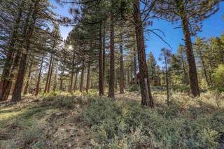 Listing Image 5 for 10576 Brickell Court, Truckee, CA 96161