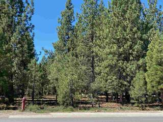 Listing Image 3 for 10035 Martis Valley Road, Truckee, CA 96161