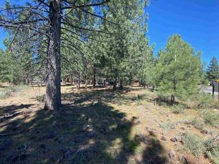 Listing Image 4 for 10035 Martis Valley Road, Truckee, CA 96161