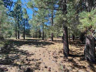 Listing Image 6 for 10035 Martis Valley Road, Truckee, CA 96161