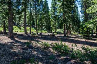 Listing Image 11 for 8324 Valhalla Drive, Truckee, CA 96161