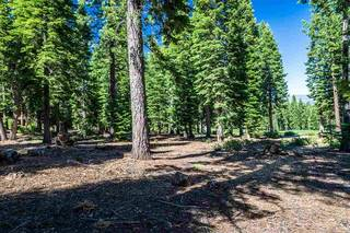 Listing Image 10 for 8324 Valhalla Drive, Truckee, CA 96161
