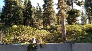 Listing Image 4 for 1492 Davos Court, Alpine Meadows, CA 96146-0000