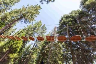 Listing Image 18 for 725 Granlibakken Road, Tahoe City, CA 96145