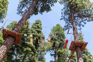 Listing Image 19 for 725 Granlibakken Road, Tahoe City, CA 96145