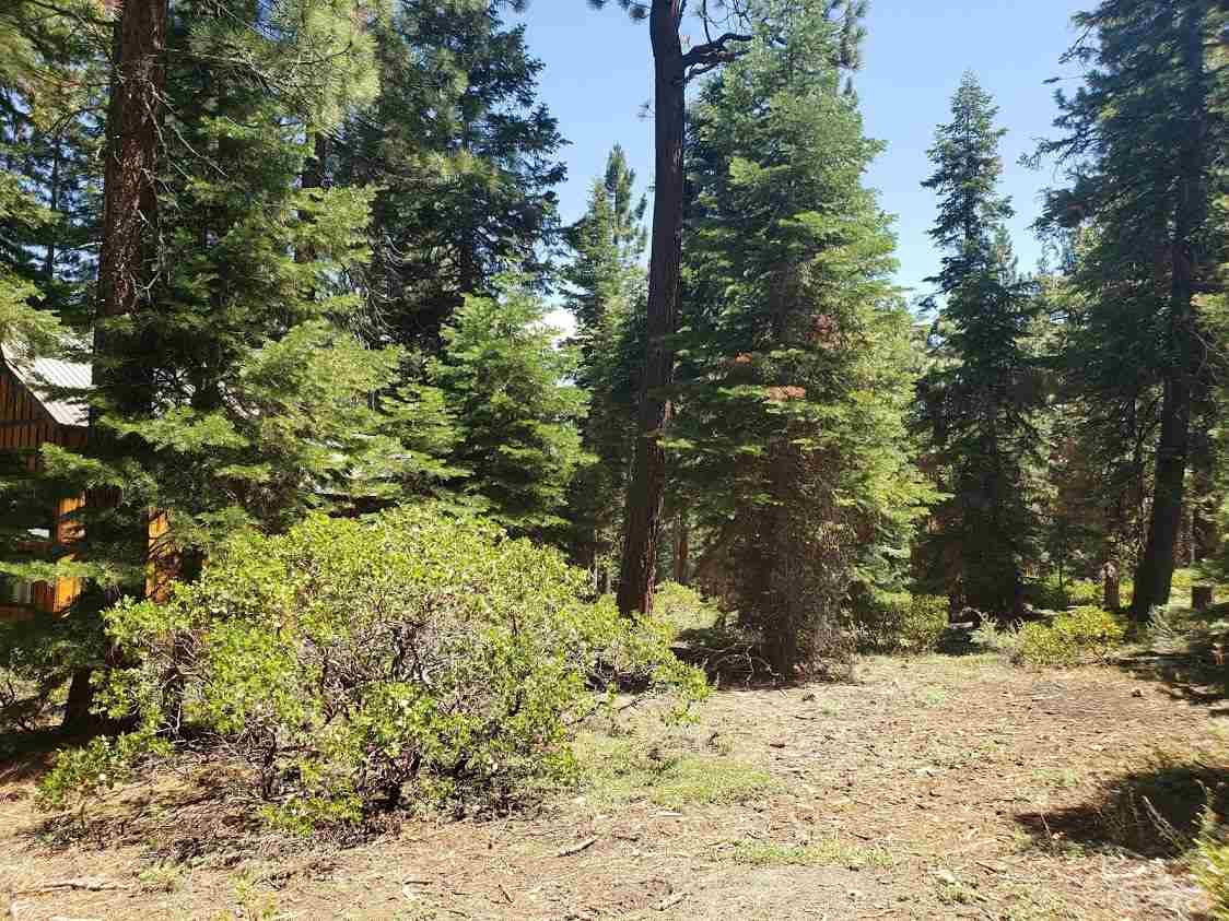 Image for 00 Pinedrop Lane, Tahoe Vista, CA 96148-0000