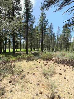 Listing Image 5 for 8860 George Whittell, Truckee, CA 96161