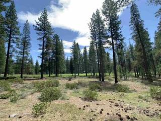 Listing Image 6 for 8860 George Whittell, Truckee, CA 96161